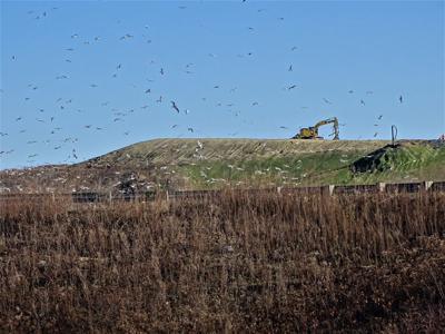 Turnkey landfill in Rochester