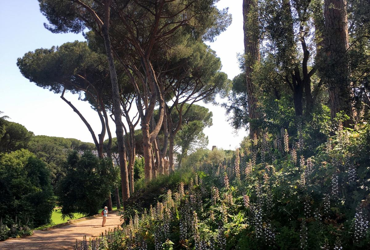 On Rome's seven hills, countless wonders underfoot