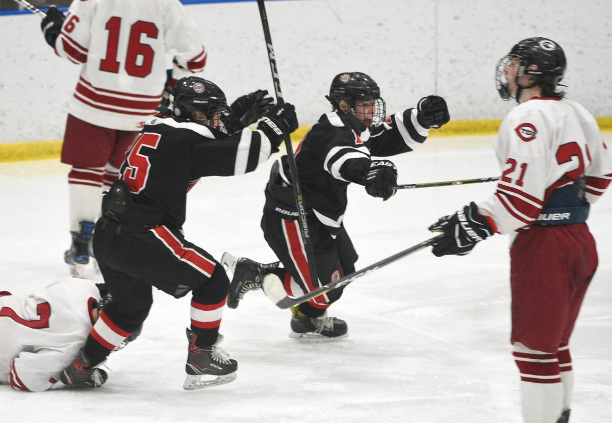 Division I hockey