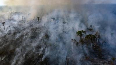 An aerial view of forest fire of the Amazon