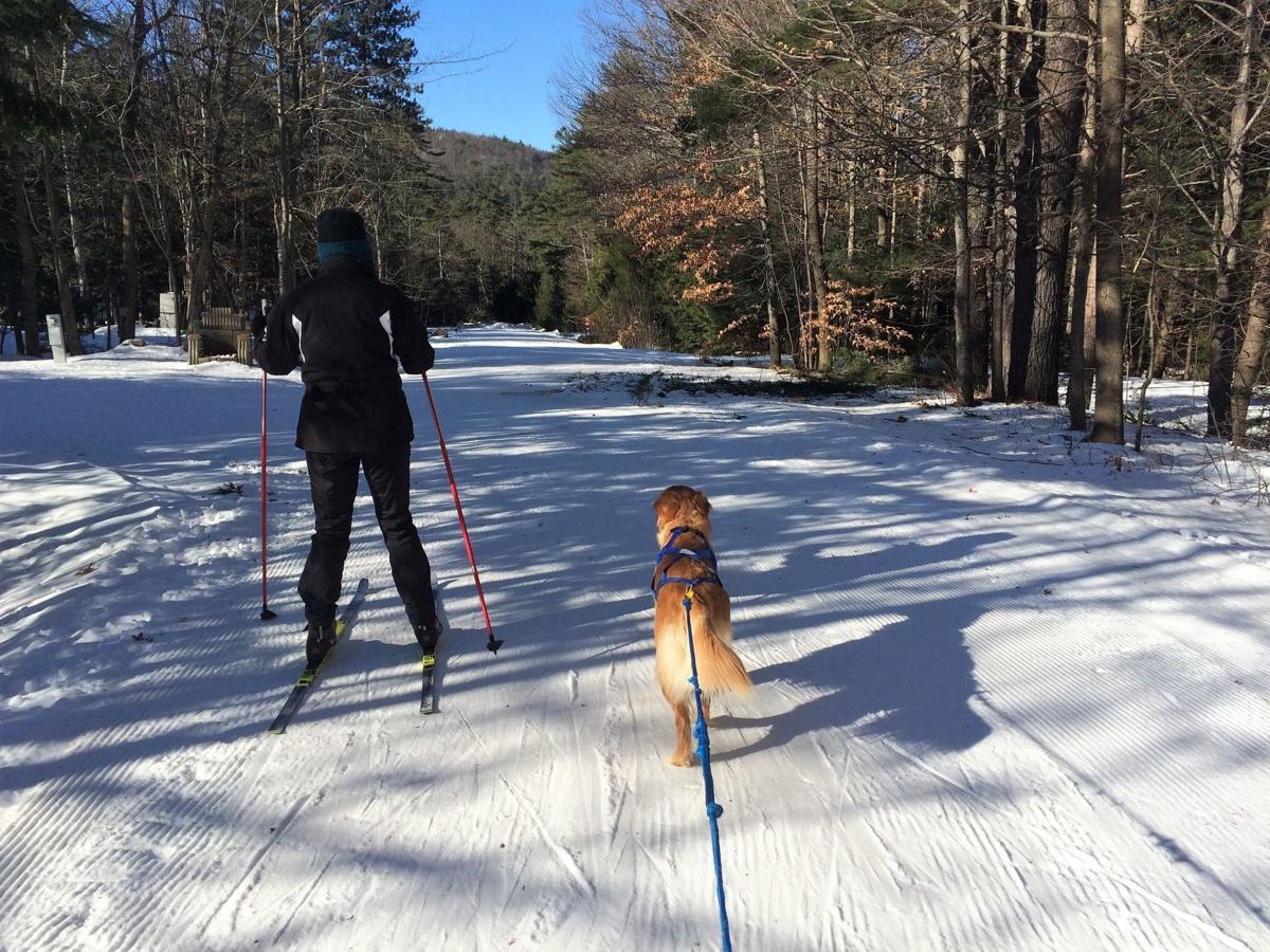 WN_skijor-JaneMaggie_McPhaul.jpg
