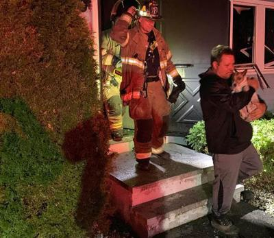 Firefighter hurts hand, cat dies in Nashua house fire