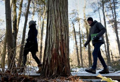 City Matters: Building a pathway into nature
