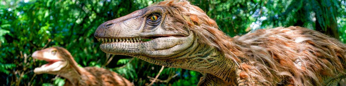 Animatronic Dinosaurs To Roam Holderness Unionleader Com