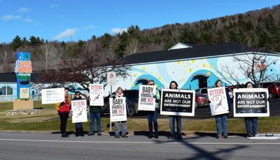Aquarium protest