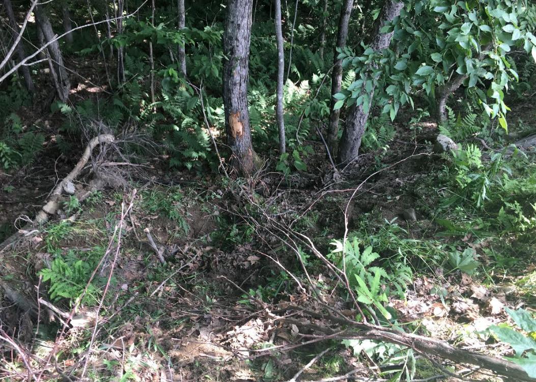 Quincy, Mass., man hurt after Clarksville ATV crash