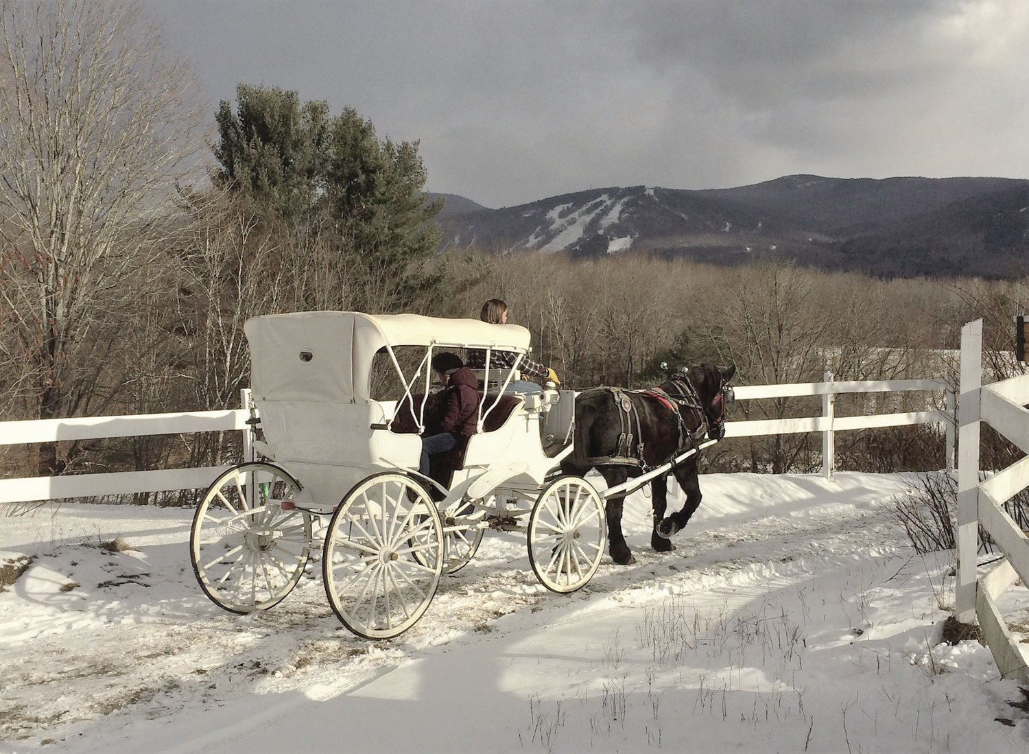 Winter Notes Riding Into A Christmas Card Scene On A Horse Drawn Winter Tour Winter Fun Unionleader Com