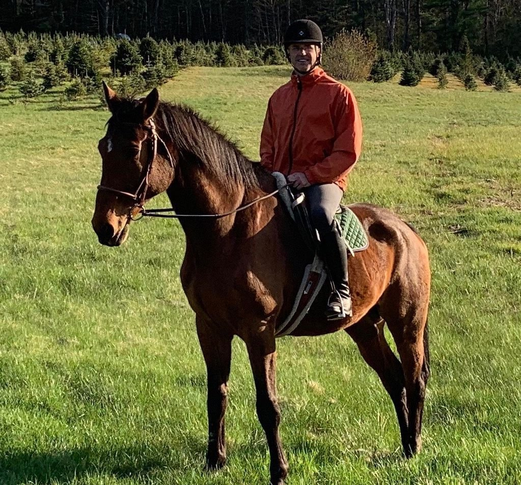 17 days after he disappeared, still no sighting of Leo the horse