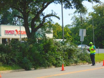 Tree limbs continued to be cut on Martin Luther King BLVD. Monday, September 27, 2021. (Photo by Faye Gaston)