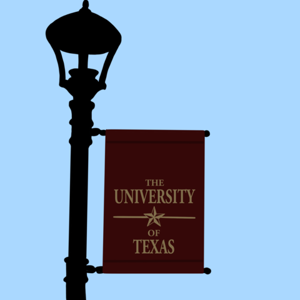 The University Star - cover