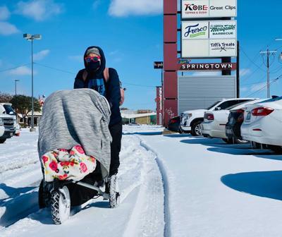 Winter storm stroller