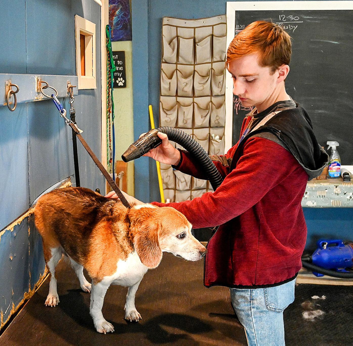 SMI Charity Dog Wash-2.jpg