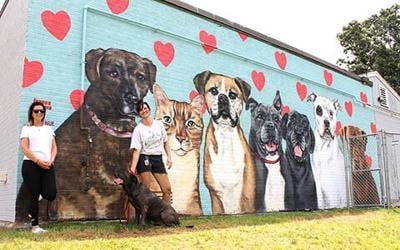CUMB mural ws