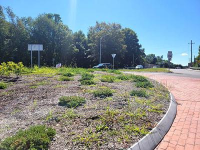 Roundabout maintenance
