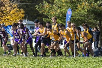 Cross country season halts at the starting line