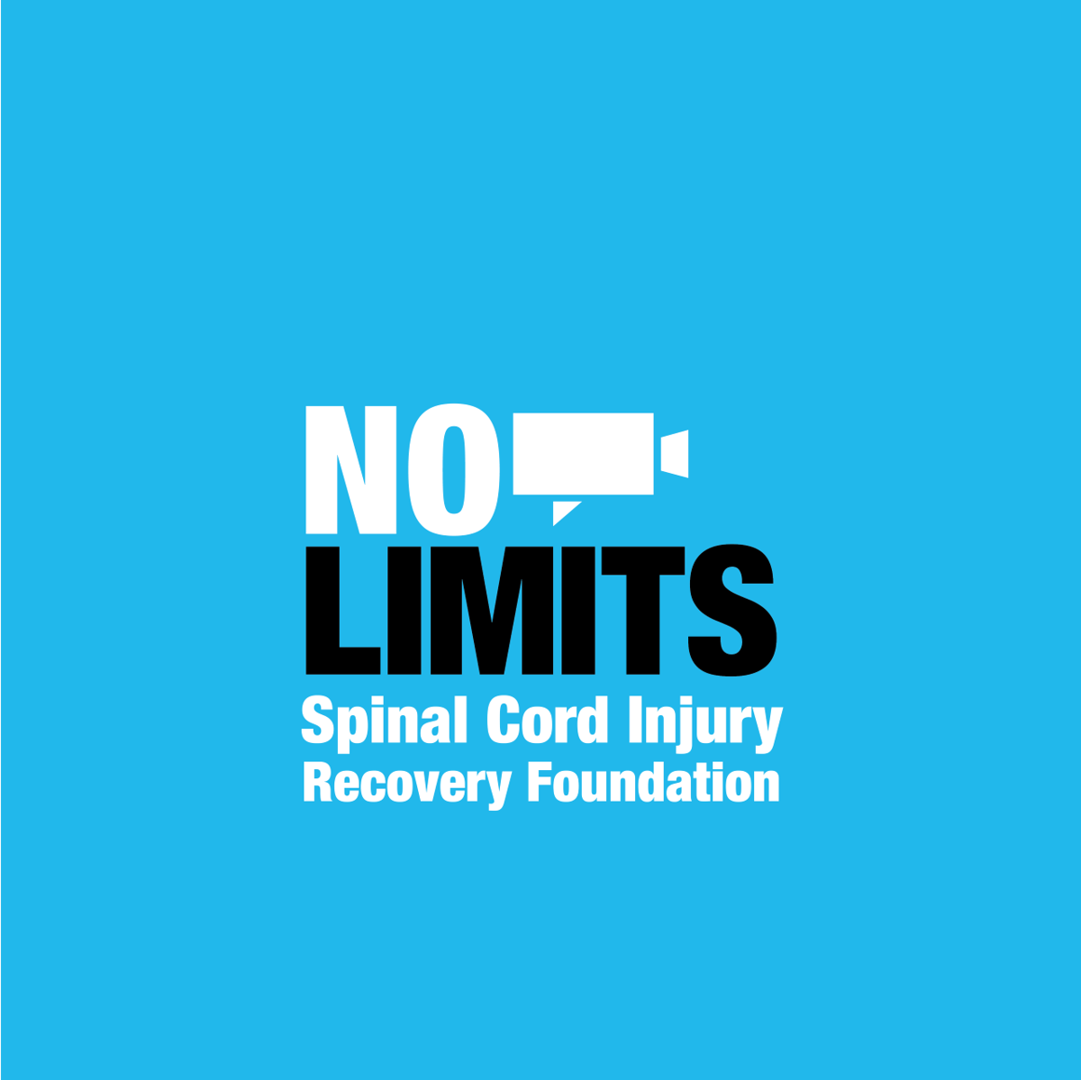 No Limits Logo.png