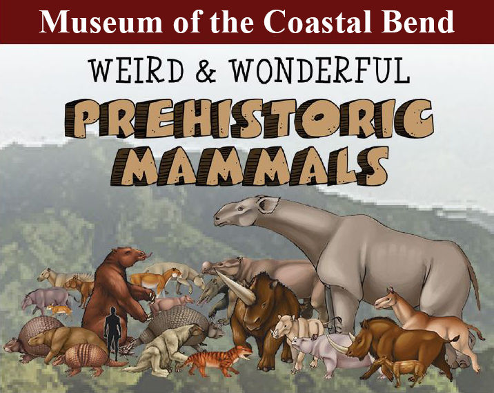 Weird & Wonderful Prehistoric Mammals