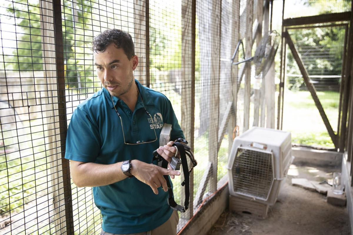 Zoo starts research program