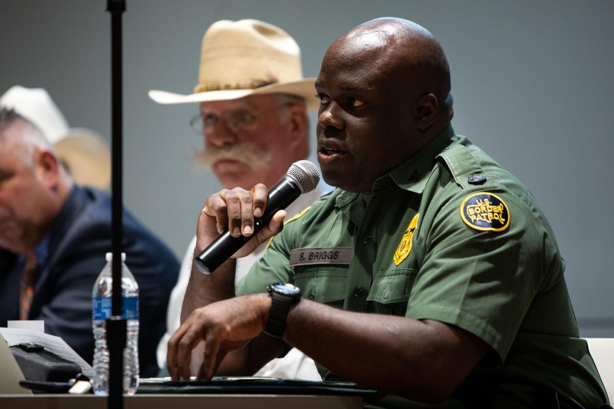 Border security panel