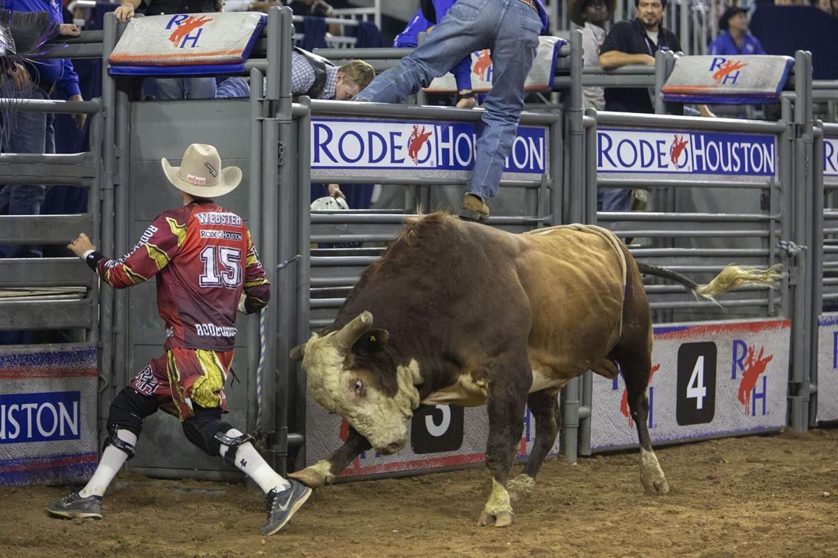 'Bullfighter Cody Webster' by Daniel Kramer