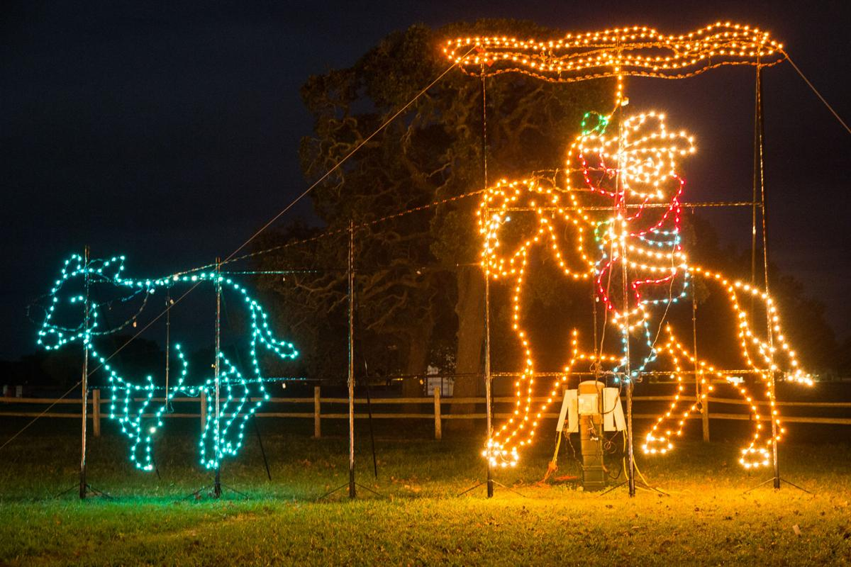 Cuero's Christmas in the Park
