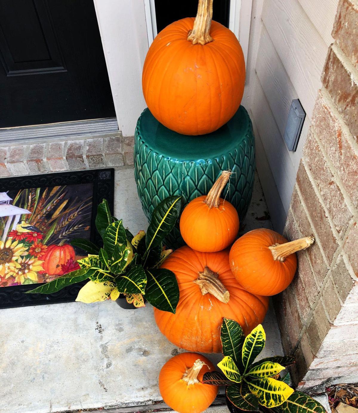 Crotons with pumpkins at front door