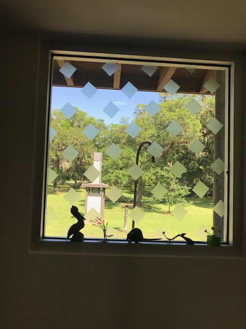 BirdTape decals applied to windows to avoid bird strikes at the GCBO headquarters.