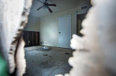 Survey reveals Harvey damaged 3rd of Victoria apartments