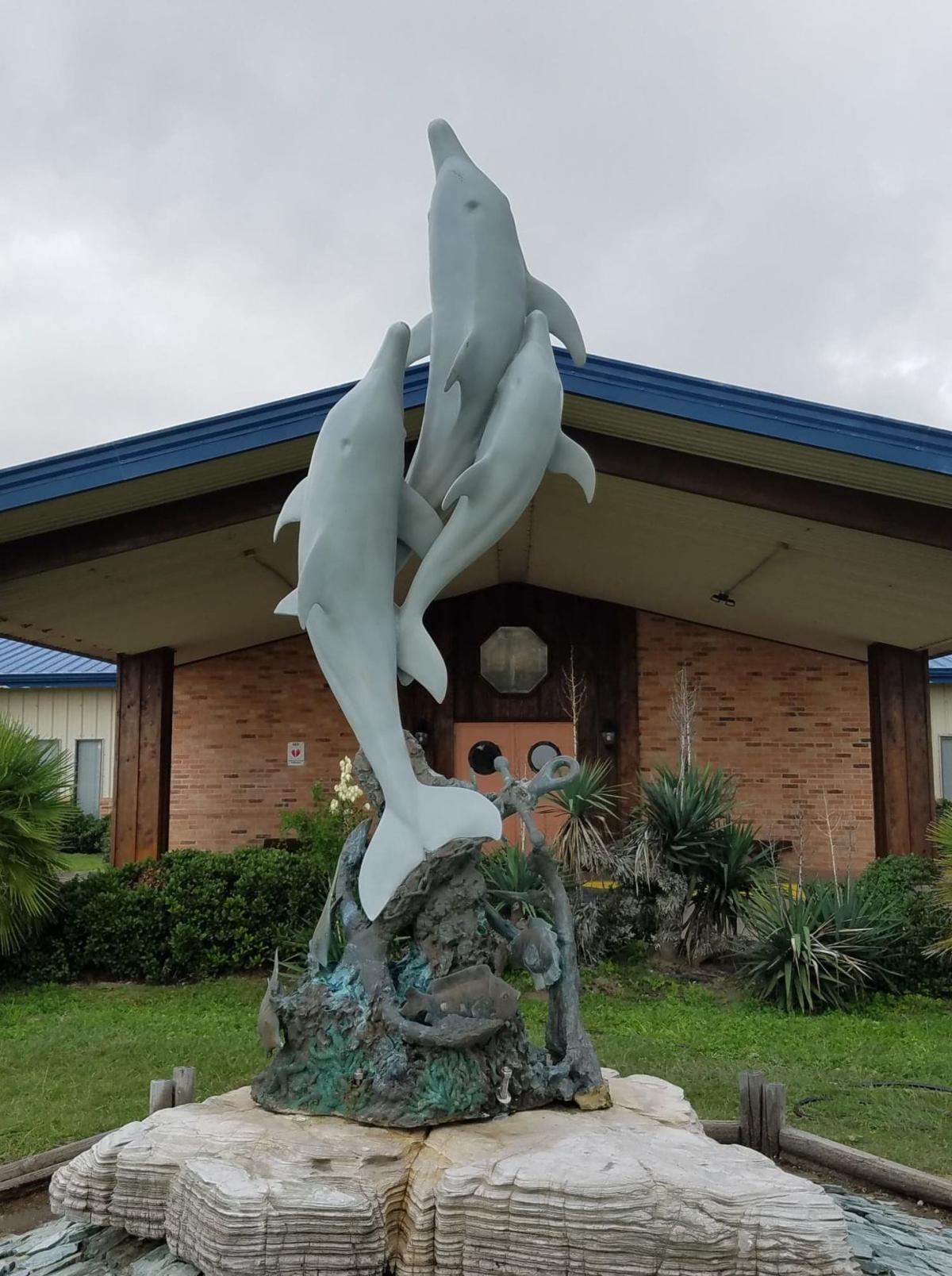 beloved dolphin statue returns to port o u0026 39 connor