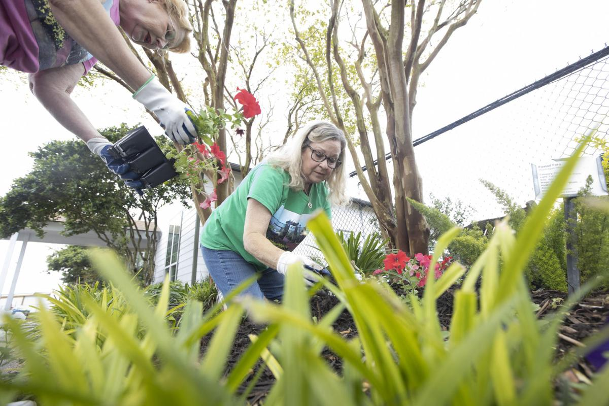 Victoria master gardeners prepare for statewide confrence