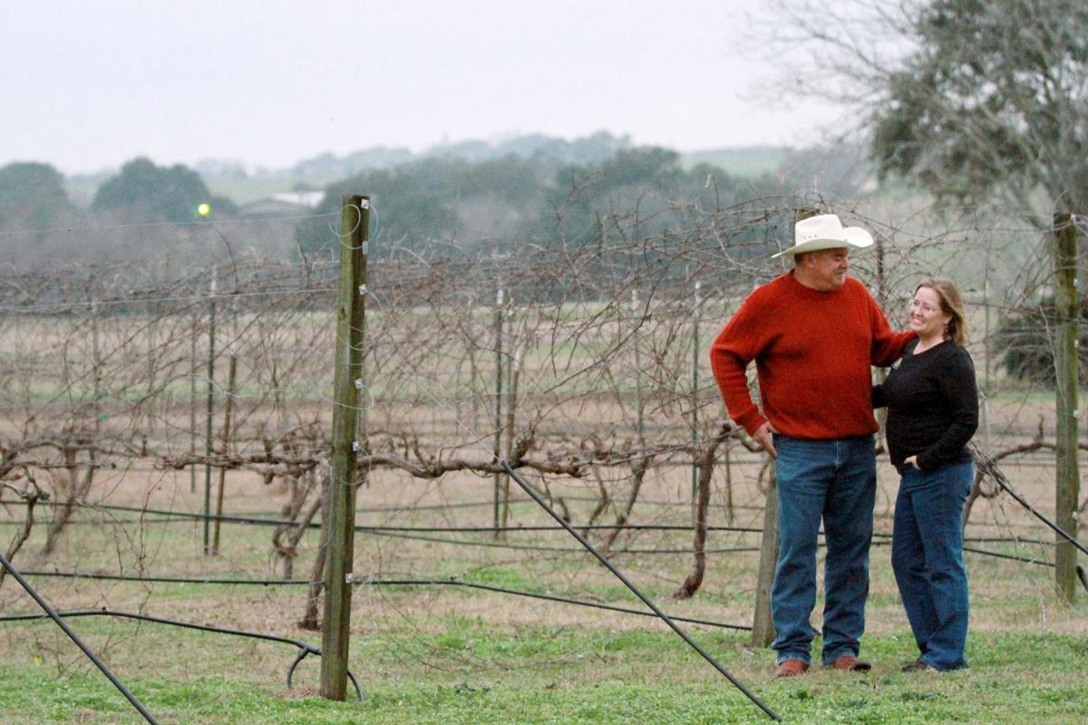 Award Winning Vineyard Pushes For Local Foot Traffic