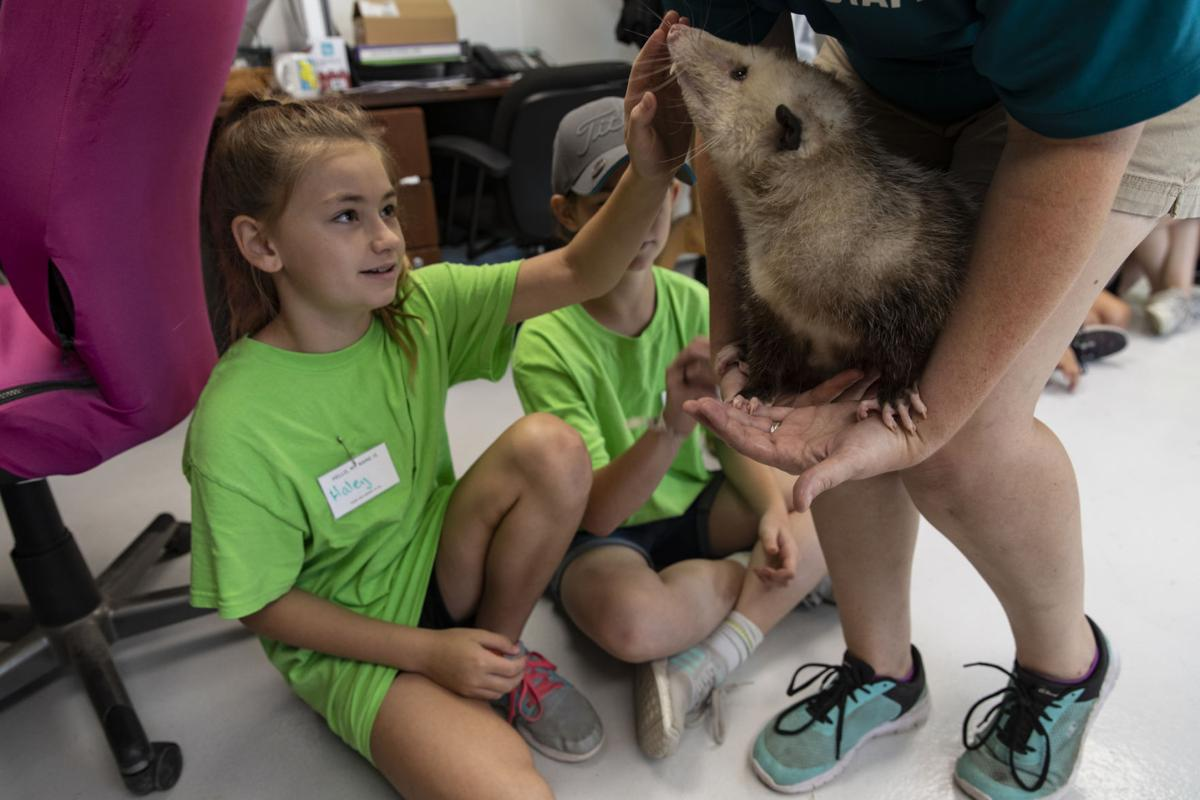 Texas Zoo Vet Camp