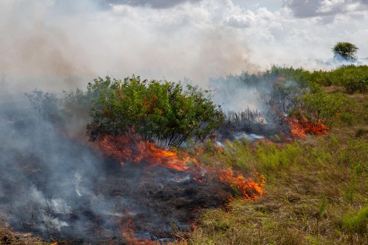 Aransas National Wildlife Refuge Prescribed Burn