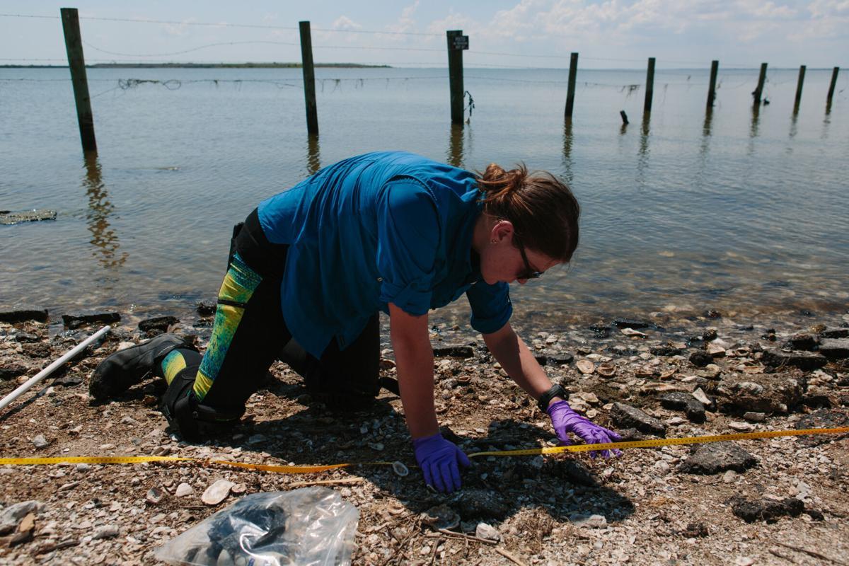Researchers study relationship between plastics, mercury in local bays