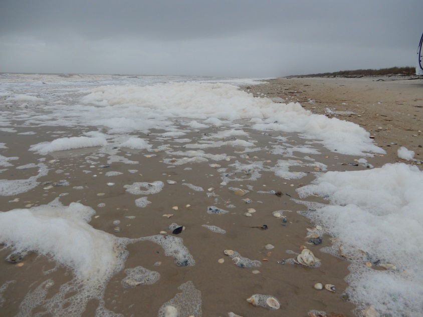 What on Earth is the foamy stuff on the beach?