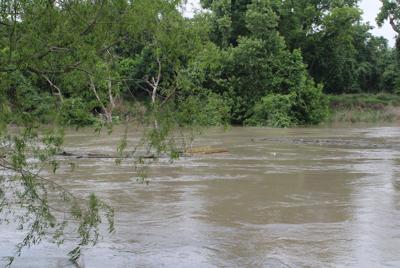Guadalupe River rises