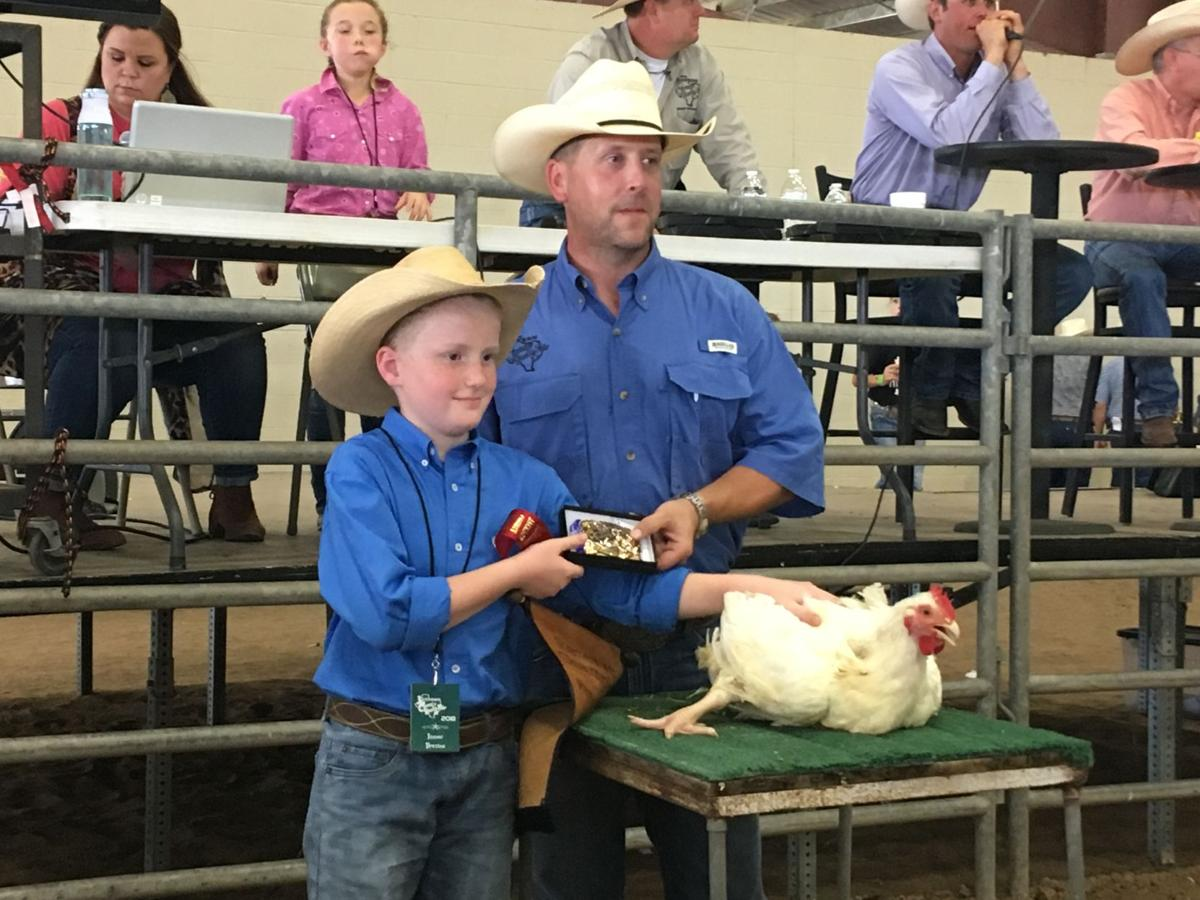 Jackson County Youth Fair auction nets more than $800K