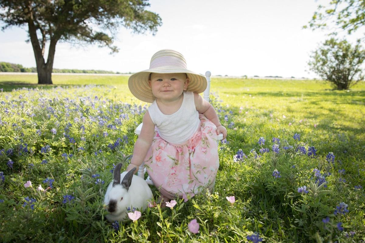 Easter 2019 : Bluebonnets and a bunny too!!!