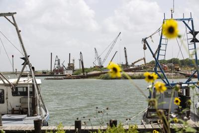Farenthold tried to steer federal contract to Calhoun port chairman
