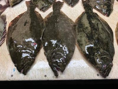 Anglers gear up for public scope meeting regarding flounder regulations