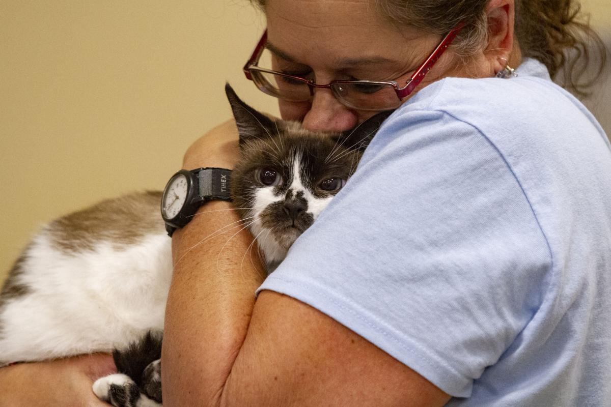 National Adoption Weekend at PetSmart