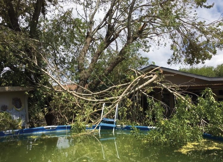 Lawyer: Insurance companies not friends of Harvey victims