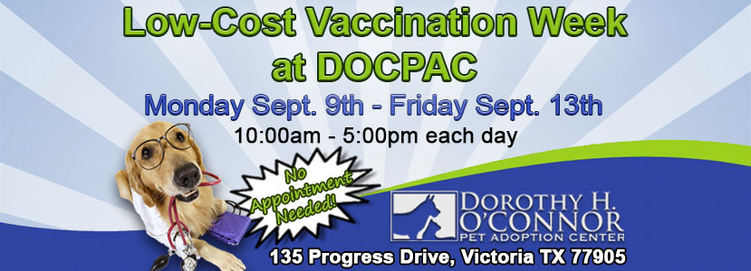 Low-Cost Vaccination Week at DOCPAC!