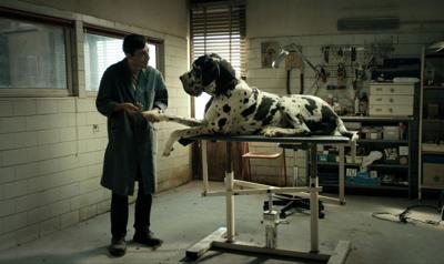 Marcello Fonte stars in Matteo Garrone's 'Dogman'