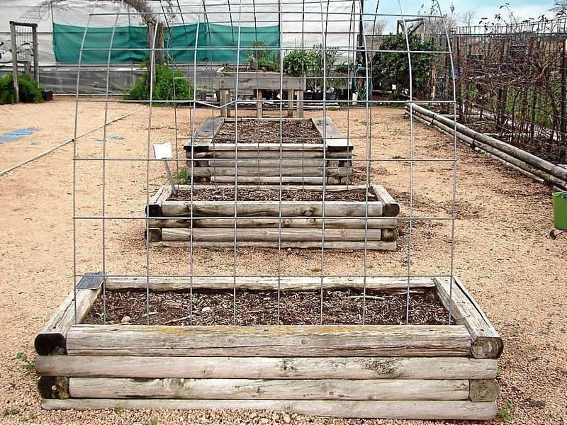 Gardenersu0027 Dirt: Pressure Treated Lumber In The Garden