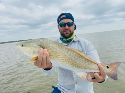 Bink redfish