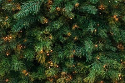 City of Bloomington to host virtual tree lighting ceremony