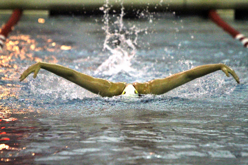 2014 Preview for Swimming and Diving