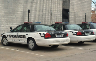 Normal Police Cars