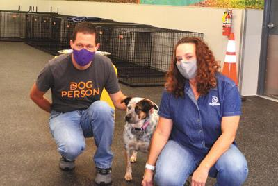 Dogtopia of Viera family facilitates happy dog days